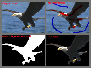 eagle segmentation result
